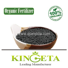 Kingeta Biochar Organic Fertilizer Lawn Fertilizer